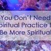 "You Don't Need Spiritual Practice To ""Be More Spiritual"""