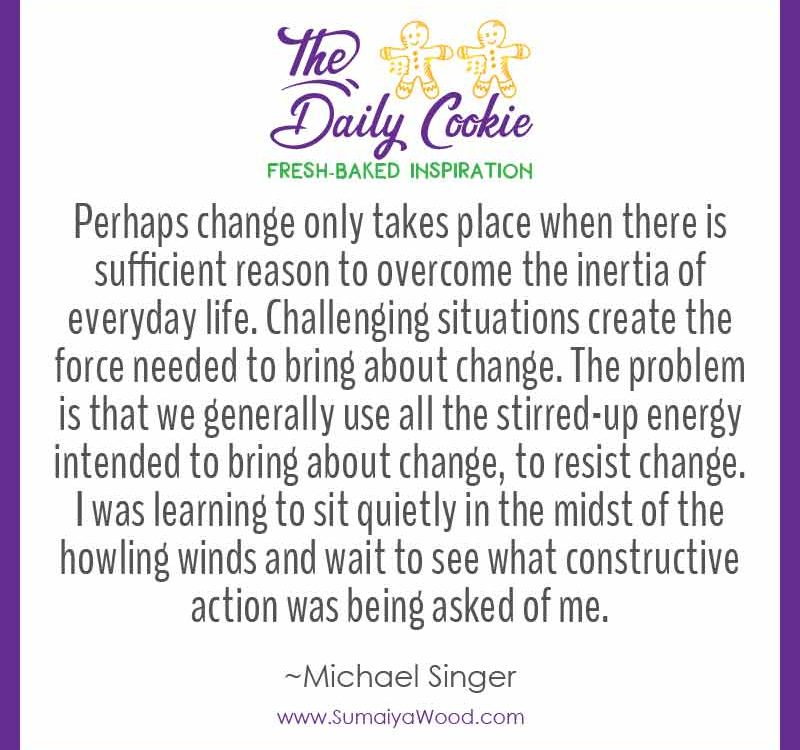"""Inspiring quote from Michael Singer: """"Time and again I was seeing that if I could handle the winds of the current storm, they would end up blowing some great gift. I was beginning to view these storms as a harbinger to transformation. Perhaps change only takes place when there is sufficient reason to overcome the inertia of everyday life. Challenging situations create the force needed to bring about change. The problem is that we generally use all the stirred-up energy intended to bring about change, to resist change. I was learning to sit quietly in the midst of the howling winds and wait to see what constructive action was being asked of me."""""""