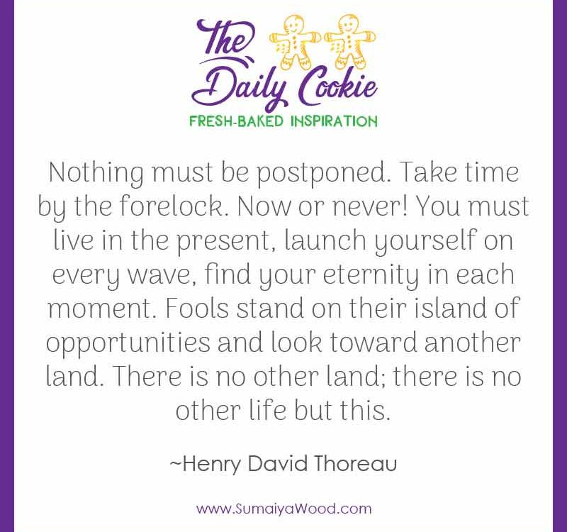 "Inspiring quote from Henry David Thoreau: ""Nothing must be postponed. Take time by the forelock. Now or never! You must live in the present, launch yourself on every wave, find your eternity in each moment. Fools stand on their island of opportunities and look toward another land. There is no other land; there is no other life but this."""