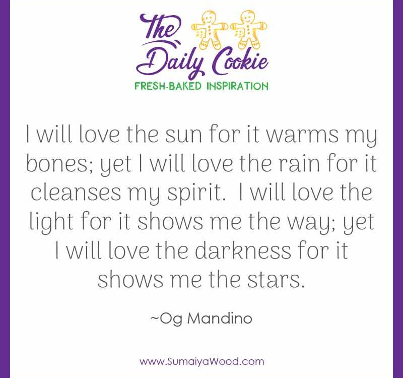 "Inspiring quote from Og Mandino: ""I will love the sun for it warms my bones; yet I will love the rain for it cleanses my spirit. I will love the light for it shows me the way; yet I will love the darkness for it shows me the stars."""