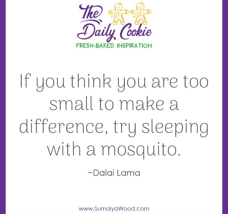 "Inspiring quote from the Dalai Lama: ""If you think you are too small to make a difference, try sleeping with a mosquito."""