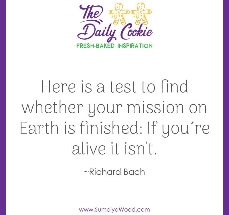 "Inspiring quote from Richard Bach: ""Here is a test to find whether your mission on Earth is finished: If you´re alive it isn't."""