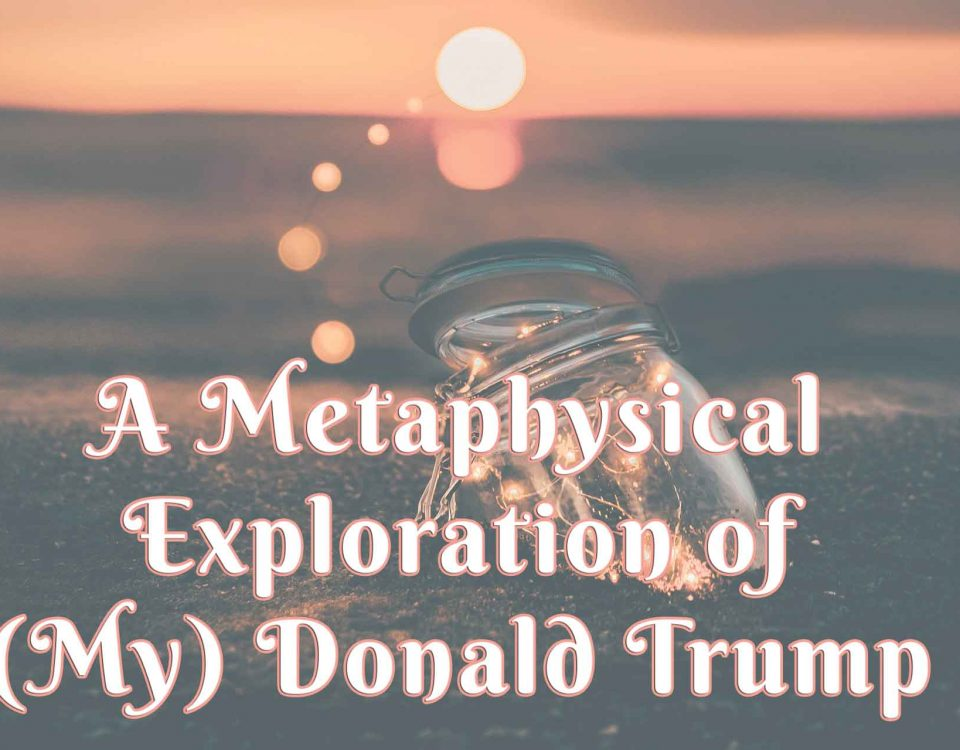A Metaphysical Exploration of (My) Donald Trump