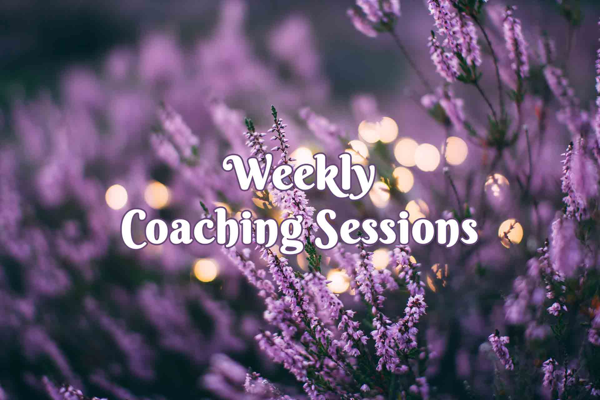 Weekly Intuitive Spiritual Life Coaching Sessions