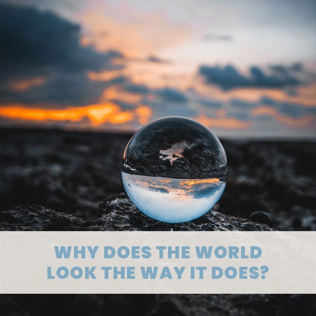 Why Does the World Look the Way It Does?