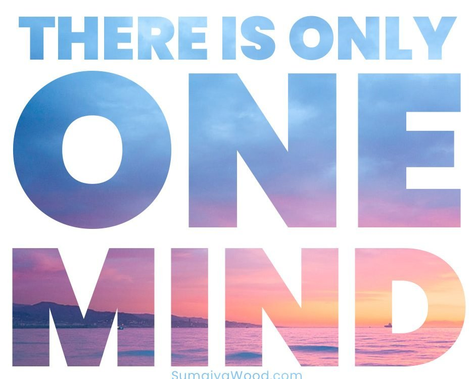 There is only One Mind