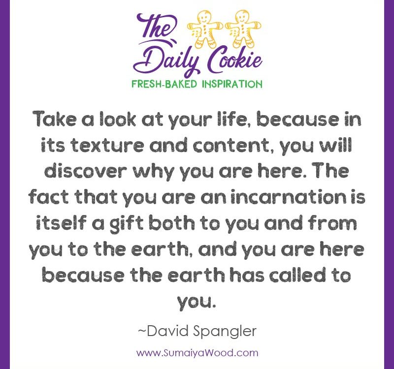 """Inspiring quote from David Spangler: """"Take a look at your life, because in its texture and content, you will discover why you are here. The fact that you are an incarnation is itself a gift both to you and from you to the earth, and you are here because the earth has called to you."""""""