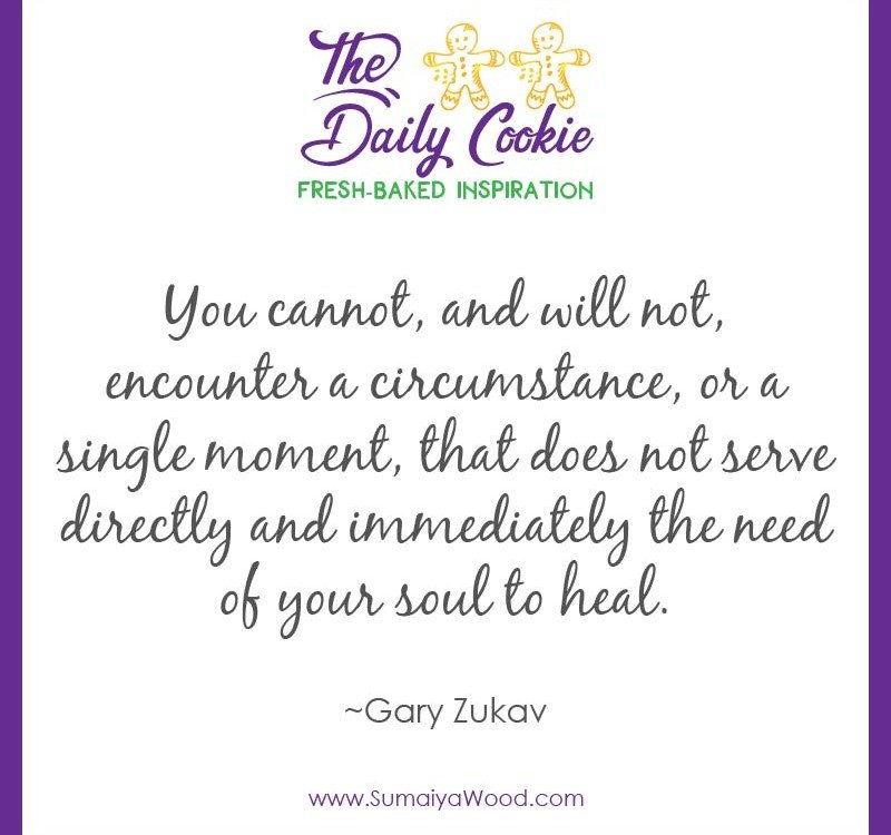 "Inspiring quote from Gary Zukav: ""You cannot, and will not, encounter a circumstance, or a single moment, that does not serve directly and immediately the need of your soul to heal."""